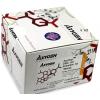 大鼠白介素10(IL-10)elisa试剂盒