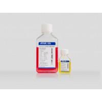 Xeno-Free人间充质干细胞培养基AC-1001003