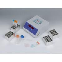 干式恒温器DH100系列