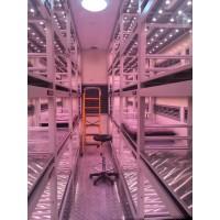 大型光照培养箱,LED植物生长箱,LED光照培养箱
