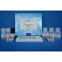赛庚啶残留快速检测试剂盒