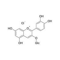 花色苷检测