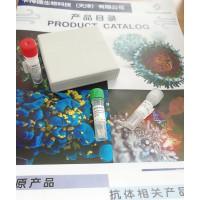 重组羊驼新冠 S1 蛋白 VHH 抗体