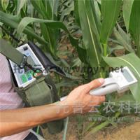 便携式光合作用测定仪光合指标测定