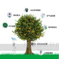 植物生理生态监测系统研究果树生长发育情况