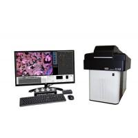 F1-CIS 数码荧光共聚焦显微镜